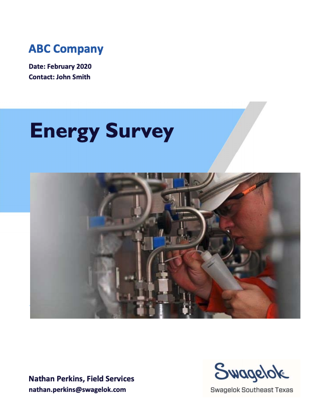energy-survey-cover